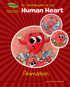 An Introduction to the Human Heart Animation