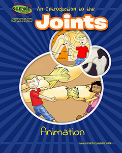 An Introduction to the Joints Animation