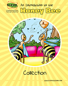 An Introduction to the Honey Bee Collection