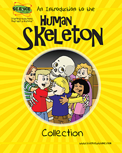 An Introduction to the Human Skeleton Collection