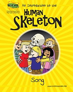 An Introduction to The Human Skeleton Song